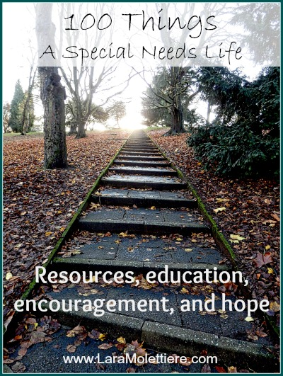 100 things a special needs life resource list