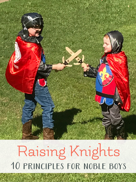 knights in training parenting review