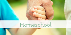 homeschool methods and ideas