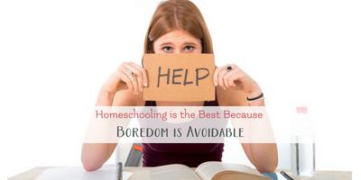 Homeschooling is the Best Because Homeschool isn't Boring