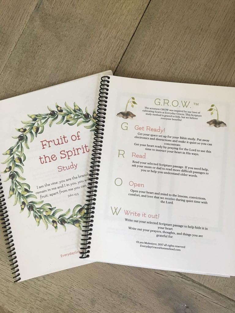 homeschool scripture study
