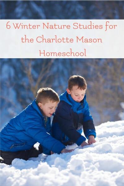 winter nature study ideas for charlotte mason homeschool