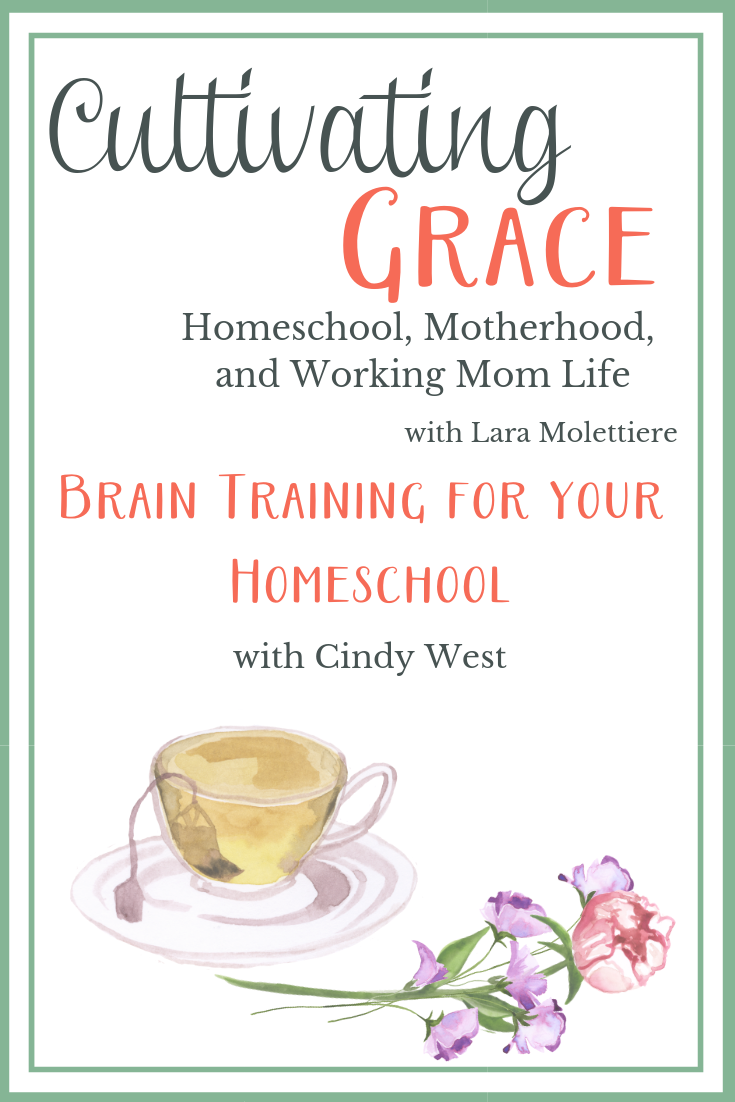 brain training for your homeschool with city west